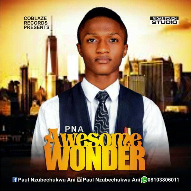 PNA - Awesome Wonder
