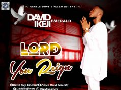 David Emerald Ikeji - Lord You Reign