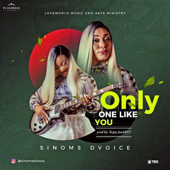 Only One Like You - Sinoms Dvoice