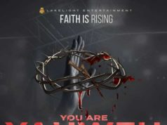 Steve Crown - Faith Is Rising Album