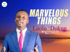 Laolu Dokun - Marvelous Things