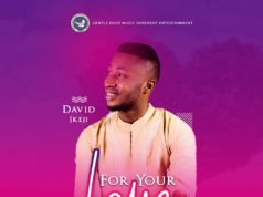 David Ikeji - For Your Love