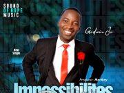 Godwin Jo - Impossibilities Possible