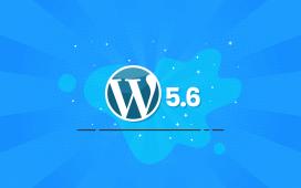 WordPress 5.6.2 Maintenance