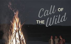 The Color - Call Of The Wild (Single)